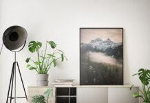 Spraw, aby twój salon był niepowtarzalny i postaw na modne plakaty